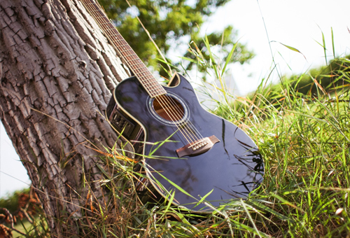 An image of an acoustic guitar leaned against a tree.